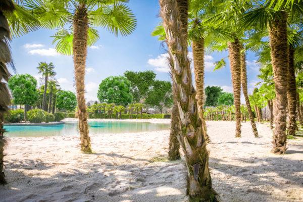 New Palm Beach